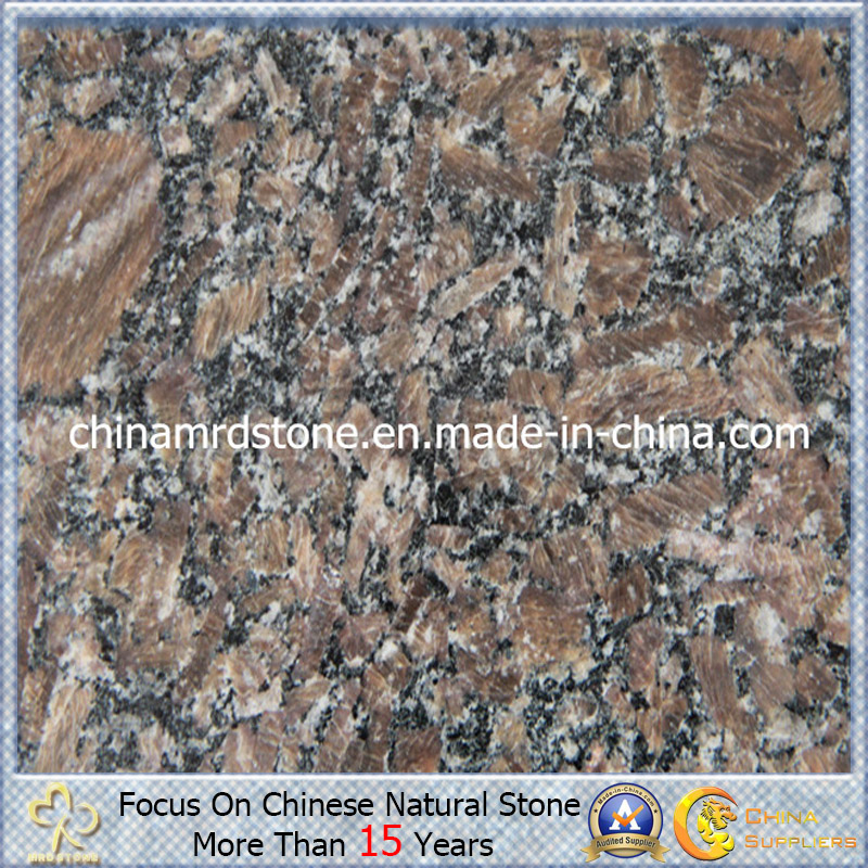 Nuevo Royal Brown Granite para Countertop o Flooring Tile