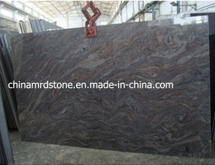 Paradiso Polished Classico Granite Slab para Paving